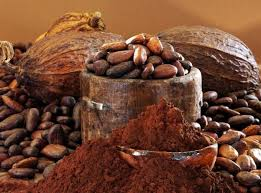 cacao to chocolate