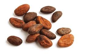 what are cacao beans